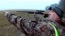 Ч.2 Загонная охота на лося в Беларуси 2019. Загонщицы, первый лось на 2 отростка. Driven elk huntin