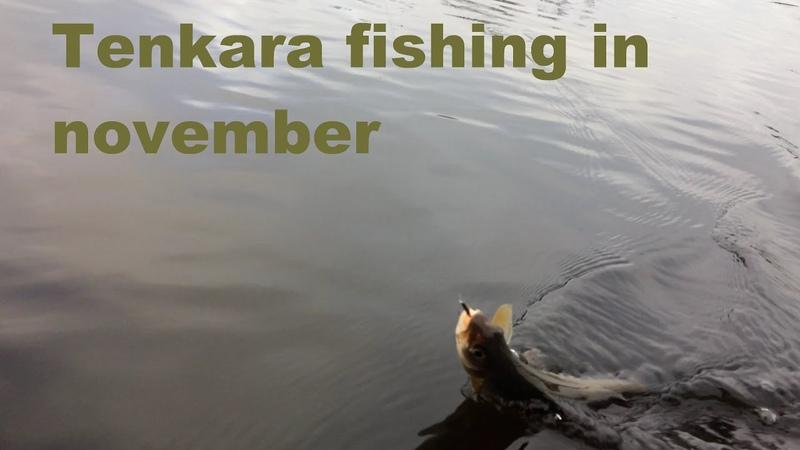 Tenkara fishing in november