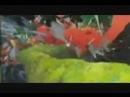 Genius Party Beyond Movie Trailer - видео ролик смотреть на Video.Sibnet.mp4