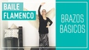 Brazos Basicos Flamenco