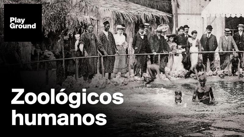 Seres humanos expuestos como animales en el zoo el espectáculo supremacista de la época colonial