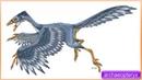 Efeito sonoro de dinossauros, archaeopteryx - sound effect of dinosaurs, archeopteryx - 恐竜の効果音、始祖鳥