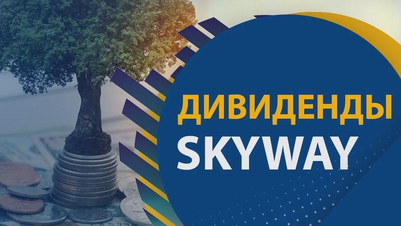 SkyWay   Поговорим о дивидендах и инвестировании в транспортную технологию SkyWay