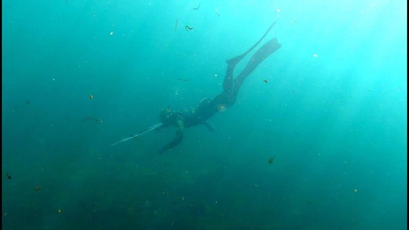 Подводная охота Ангара Иркутск Spearfishing Angara River Irkutsk 03 2021 HD 1080p