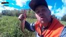 Рыбалка на севере 2 часть. Ловим щуку на спининг.