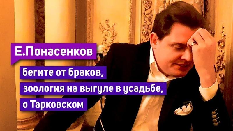 Е Понасенков бегите от браков о Тарковском зоология на выгуле в усадьбе восторг