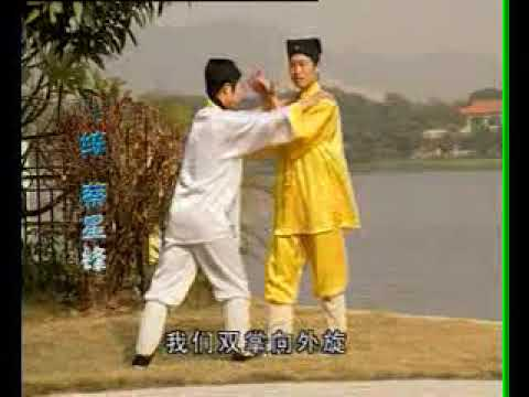 Wudang Taiji 18 Forms. 武当太极18式