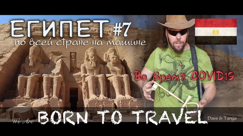 7 Египет во время COVID19 Великий Абу Симбел и вся правда о нём Асуан храм Эдфу