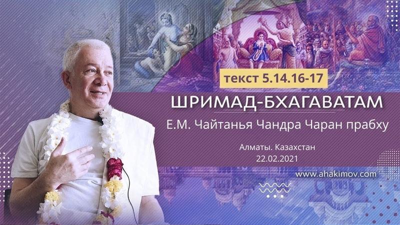 22022021 «Шримад-Бхагаватам» 5.14.16-17. Е.М. Чайтанья Чандра Чаран прабху. Алматы