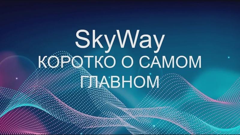 SkyWay   Коротко о самом главном
