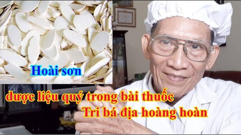 71 Hoài sơn dược liệu quý trong bài thuốc Tri bá địa hoàng hoàn l Nguyen Thieu Official