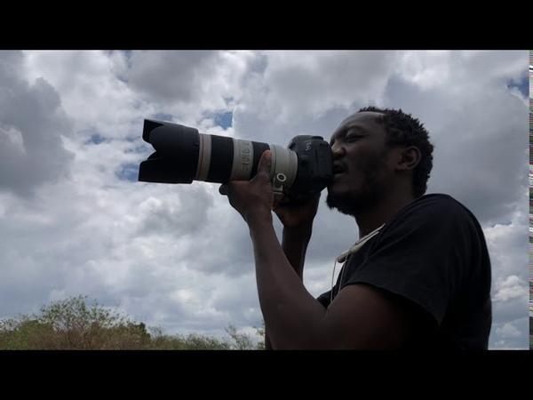 Maasai Mara National Reserve H I S Kenya Limited ERM Tours Safaris Pty LTD MagicalKenya Tembea