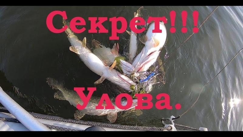 Секрет УЛОВА Как поймать много щуки! Ловля щуки на спиннинг с лодки. Рыбалка на щуку.