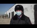 Кокпар на 400 человек остановили полицейские Шымкента