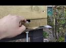 Каркасный дом своими руками. Как выровнять фундамент, подробная пошаговая инструкция.