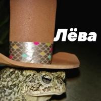 Лев Солдатов