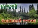 ВАСИЛИЙ ПЕСКОВ. ТАЕЖНЫЙ ТУПИК ГЛАВЫ 01-08