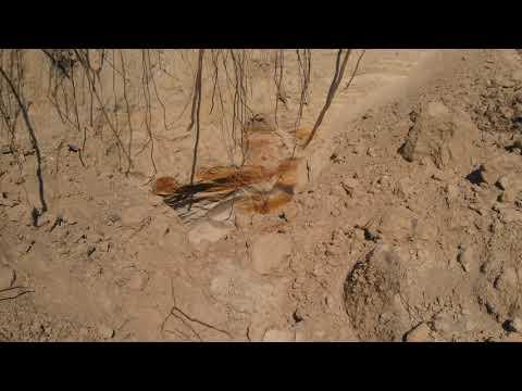 Пласты обожженной глины и золы на глубине откуда