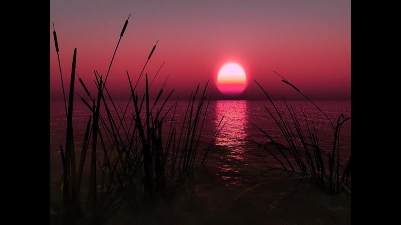 FREE Tape Beat Sunset prod Kriptonit