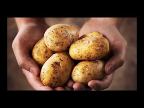 Эл.Концлагерь Ограничения на выращивание Овощей Налоги на сараи